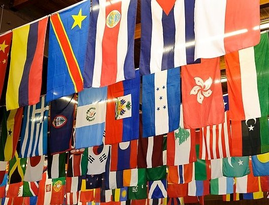 International Trade & Development