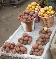 piles and containers of red and yellow potatoes