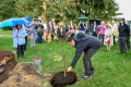 Aaron Bird Bear, assistant dean for student diversity programs in the UW School of Education, makes an offering of tobacco leaves during a President's Oak planting ceremony.
